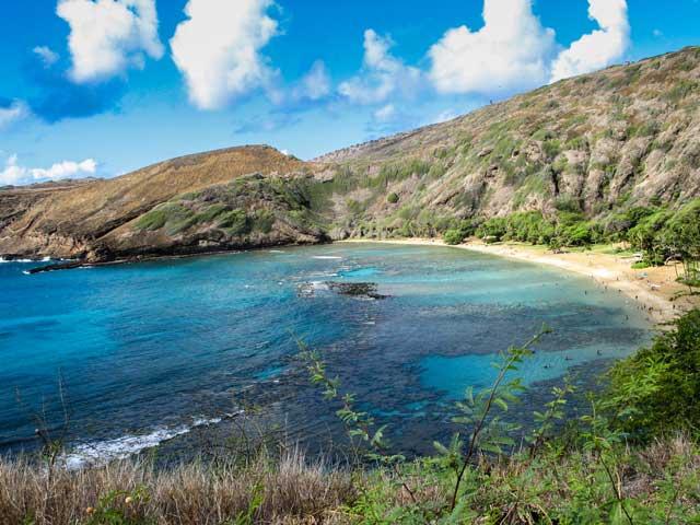 初めてのハワイ旅行の計画のために読んでおきたいハワイ本