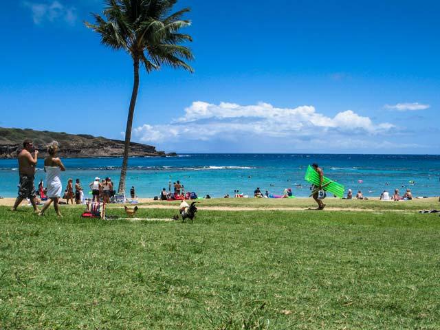 ハワイのビーチで遊ぶ時にあると便利なもの