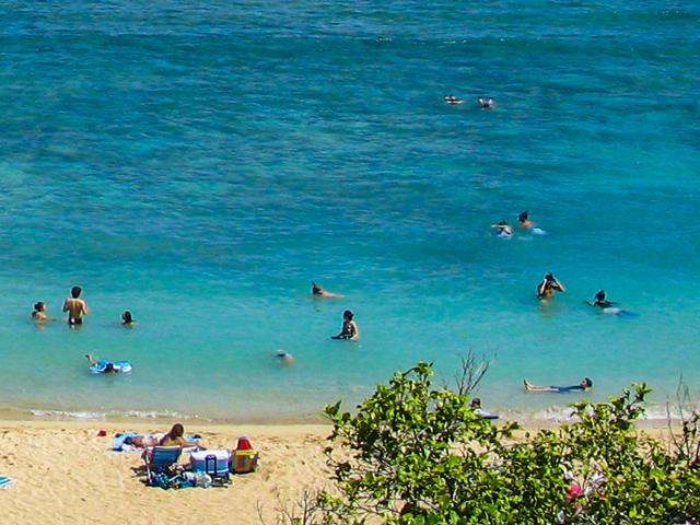 メガネ愛用者がハワイでシュノーケリングを楽しむために必携のグッズ