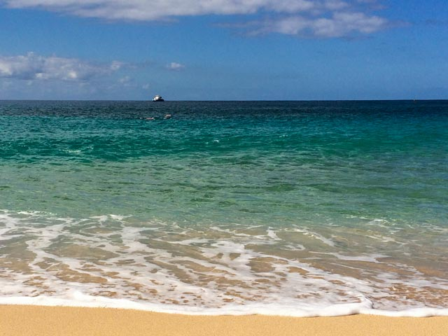 泳げない人がハワイでシュノーケリングを楽しむのに役立つグッズ